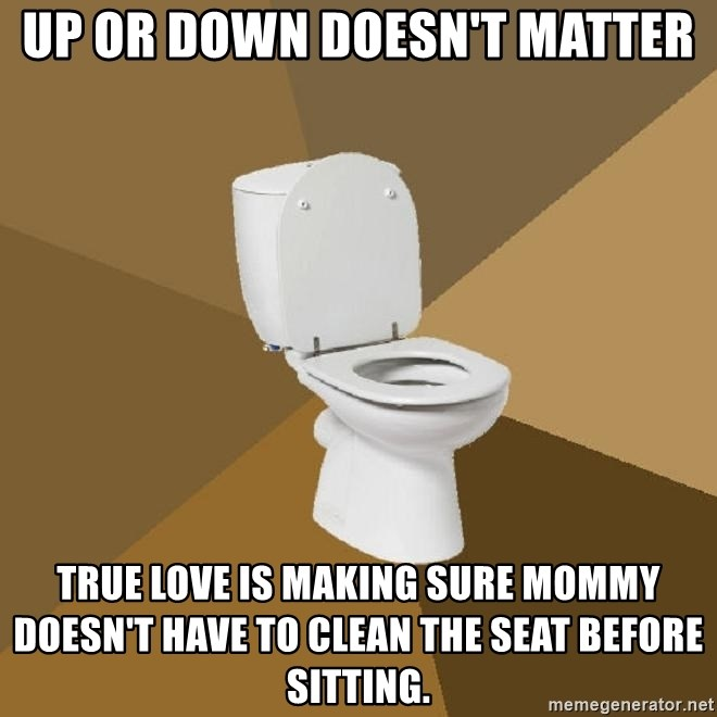 talking toilet - up or down doesn't matter true love is making sure mommy doesn't have to clean the seat before sitting.