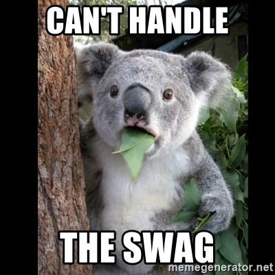Koala can't believe it - can't handle the swag