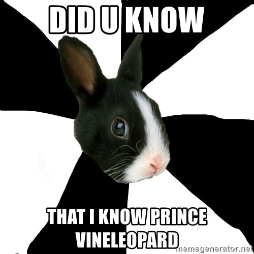Roleplaying Rabbit - did u know that i know prince vineleopard