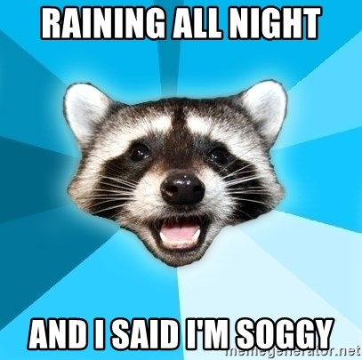 Lame Pun Coon - raining all night and i said i'm soggy