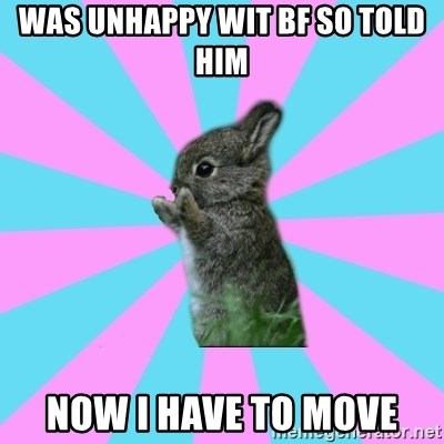 Was Unhappy Wit Bf So Told Him Now I Have To Move Yay For Life Bunny Meme Generator On the les yay side, catwoman makes a remark in arkham city that she's, kind of disappointed, ivy arguably, this is hopefully not a case of ho yay and instead mere familial affection towards his. meme generator