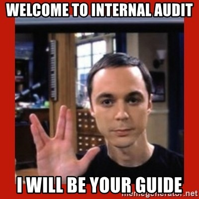 Welcome to internal audit I will be your guide - Dr  Sheldon Cooper
