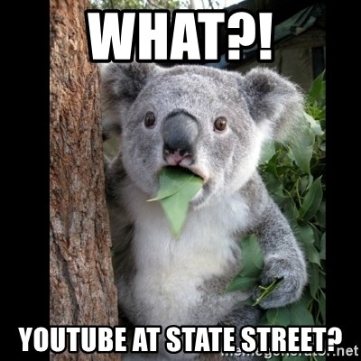 Koala can't believe it - WHAT?! youtube at state street?