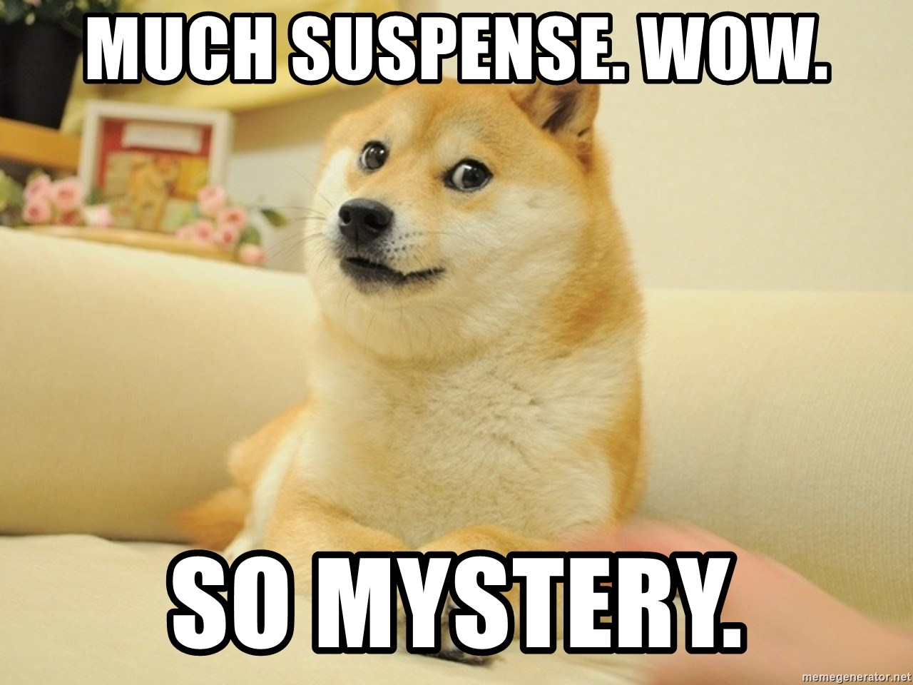 so doge - much suspense. wow. so mystery.