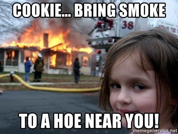 Disaster Girl - COOKIE... bring smoke to a hoe near you!