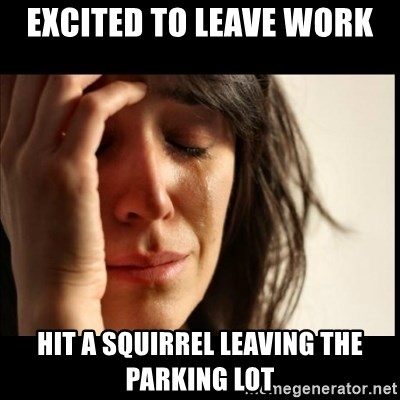 First World Problems - excited to leave work hit a squirrel leaving the parking lot