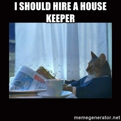 i should buy a boat cat - I SHOULD HIRE A HOUSE KEEPER