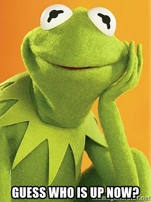 Kermit the frog -  GUESS WHO IS UP NOW?