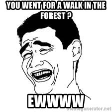 Dumb Bitch Meme - You went for a walk in the forest ? Ewwww