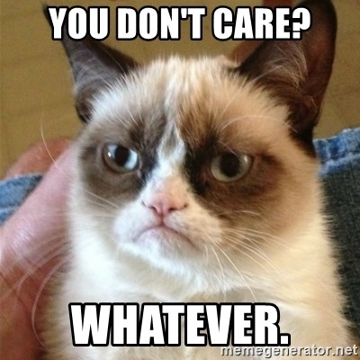 Grumpy Cat  - you don't care? whatever.