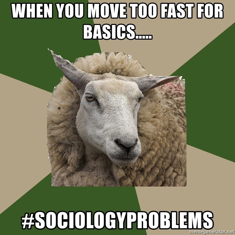 Sociology Student Sheep - When you move too fast for basics..... #sociologyproblems