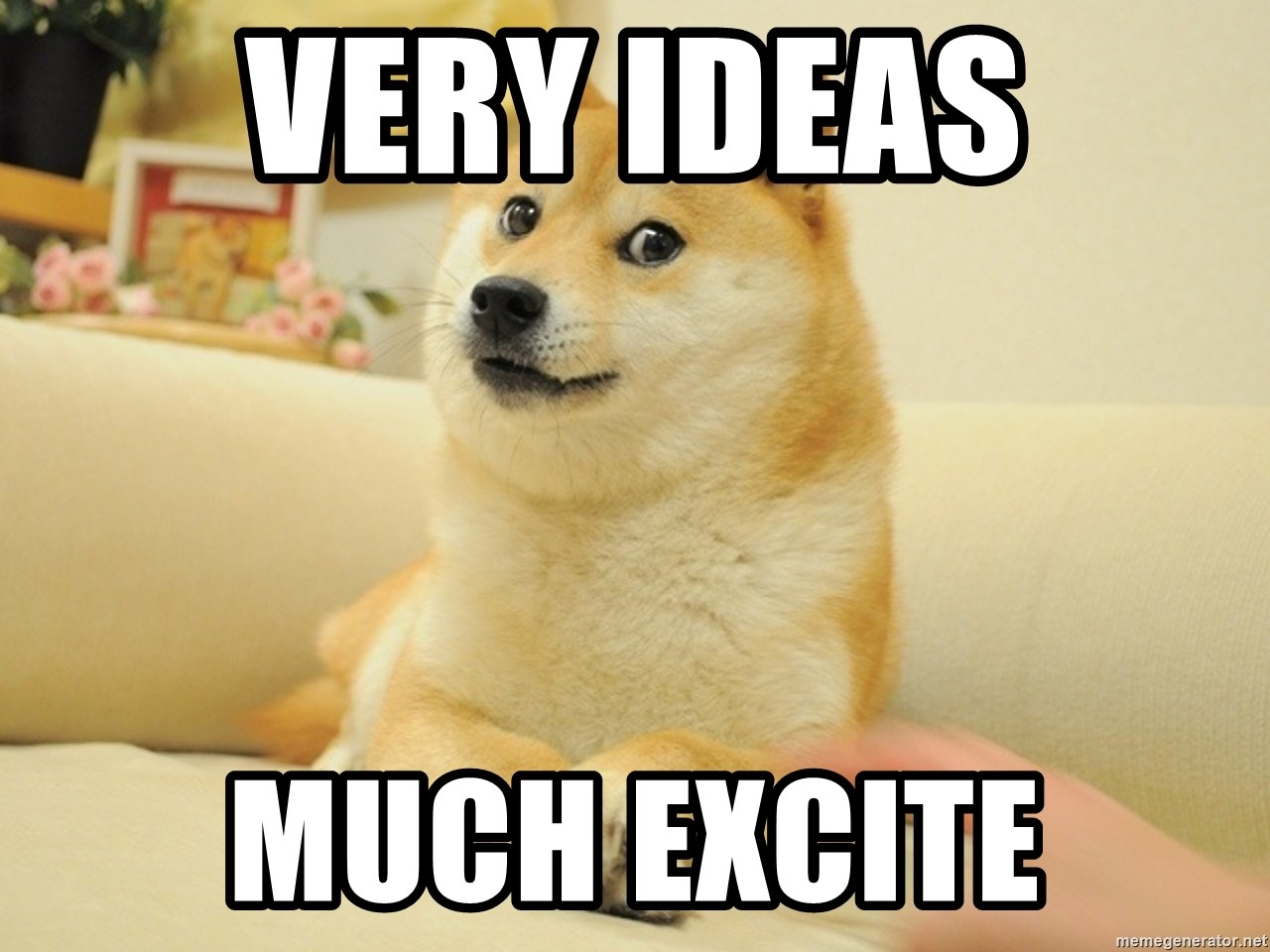 so doge - very ideas much excite