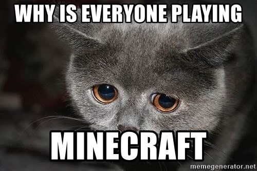 Sadcat - Why is everyone playing Minecraft
