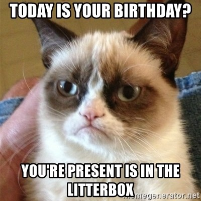 Grumpy Cat  - today is your birthday? You're present is in the litterbox