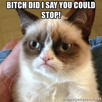Grumpy Cat  - Bitch did I say you could stop!