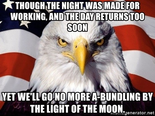 American Pride Eagle - Though the night was made for working, and the day returns too soon Yet we'll go no more a-bundling by the light of the moon.