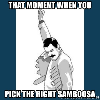 Freddy Mercury - That moment when you Pick the right samboosa