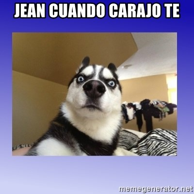 Dog Surprise - Jean cuando Carajo te