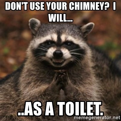 evil raccoon - Don't use your chimney?  I will... ..as a toilet.