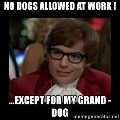 Dangerously Austin Powers - No Dogs Allowed at work ! ...except for MY grand - dog