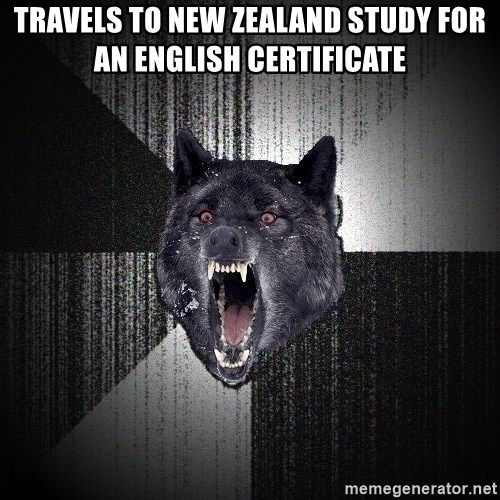 Insanity Wolf - Travels to New Zealand study for an English certificate