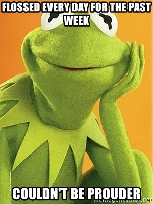 Kermit the frog - flossed every day for the past week couldn't be prouder