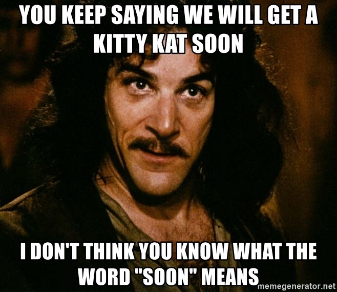 """Inigo Montoya - You keep saying we will get a kitty kat soon I don't think you know what the word """"soon"""" means"""