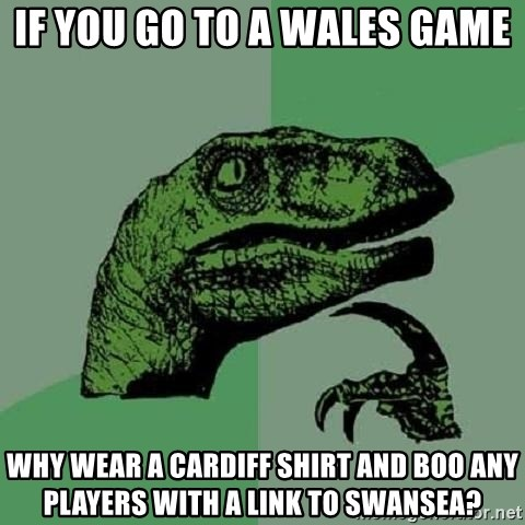 Philosoraptor - If you go to a wales game why wear a cardiff shirt and boo any players with a link to swansea?
