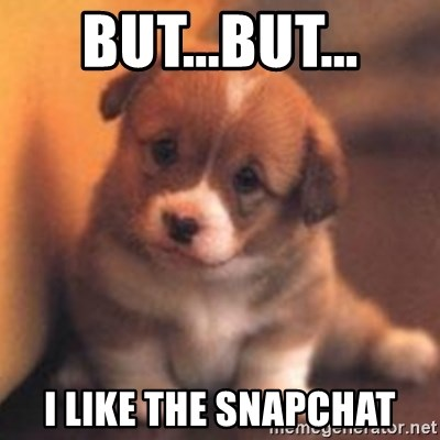 cute puppy - But...But... I like the snapchat