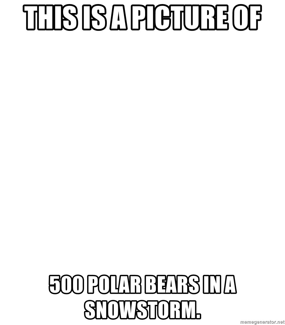 Blank Meme - This is a picture of 500 polar bears in a snowstorm.