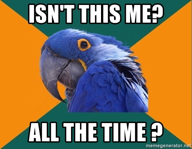 Paranoid Parrot - Isn't this me? All the time ?
