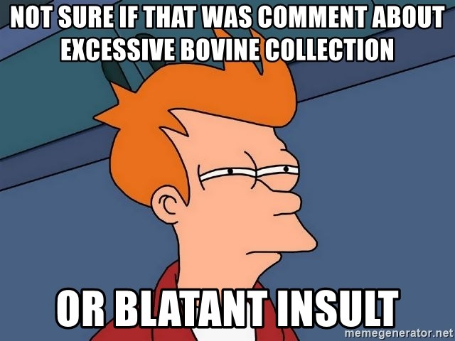 Futurama Fry - not sure if that was comment about excessive bovine collection or blatant insult