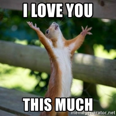 Praising Squirrel - I love you This much