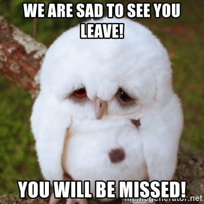 Sad Owl Baby - We are sad to see you leave! You will be missed!