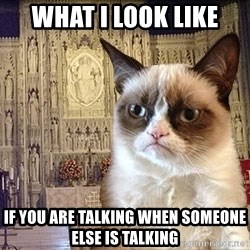 Grumpy Episcopal Cat - What I Look like if you are talking when someone else is talking