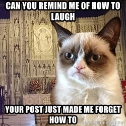 Grumpy Episcopal Cat - Can You Remind Me Of How To Laugh Your Post Just Made Me Forget How To