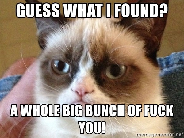 Angry Cat Meme - guess what i found?  a whole big bunch of FUCK YOU!