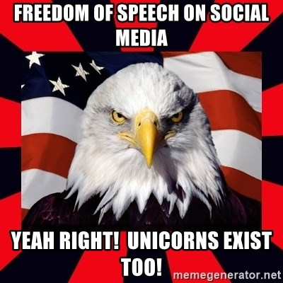 Bald Eagle - freedom of speech on social media yeah right!  unicorns exist too!
