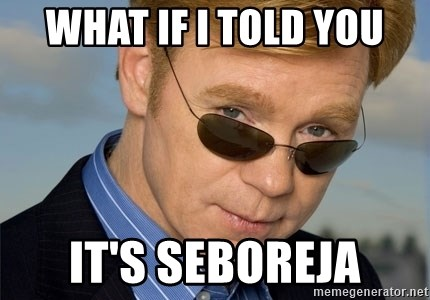 Horatio Caine - WHAT IF I TOLD YOU IT'S SEBOREJA