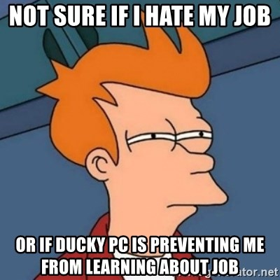 Not sure if troll - Not sure if I hate my job or if ducky PC is preventing me from learning about job