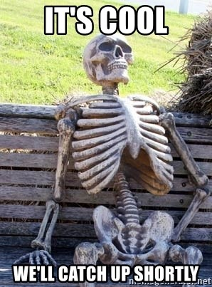 Waiting Skeleton - It's cool We'll Catch Up Shortly