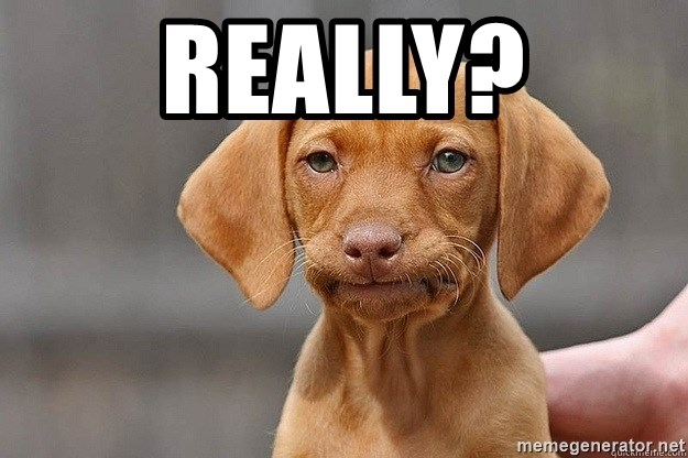 Really? - disappointed puppy | Meme Generator