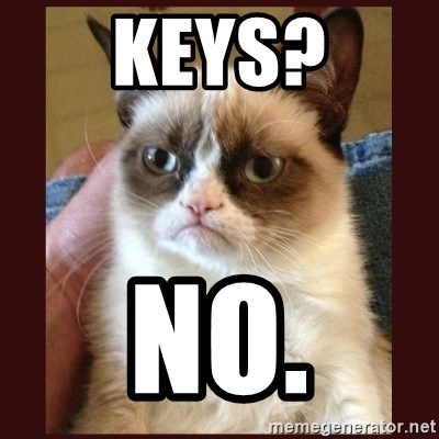 Tard the Grumpy Cat - Keys? NO.