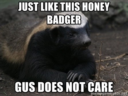 Honey Badger - Just like this Honey Badger Gus does not care