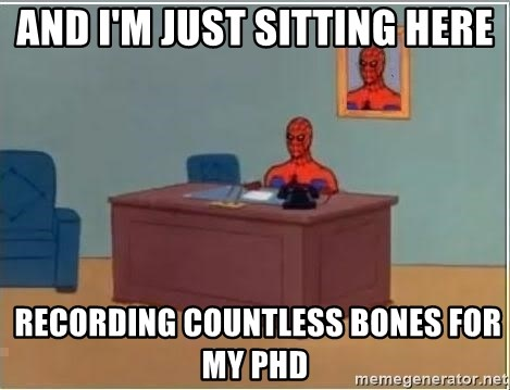 Spiderman Desk - and i'm just sitting here  recording countless bones for my Phd