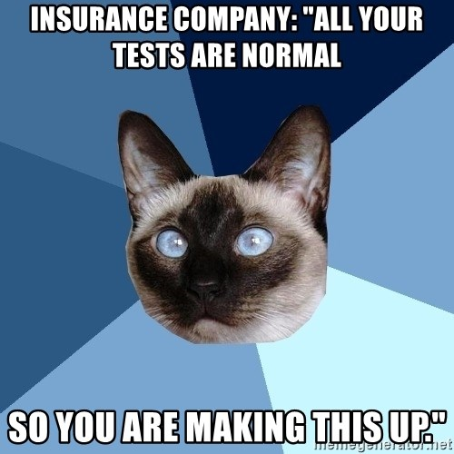 """Chronic Illness Cat - insurance company: """"All your tests are normal so you are making this up."""""""