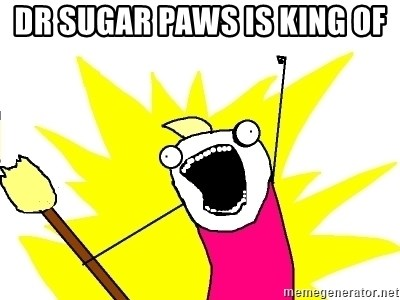 X ALL THE THINGS - Dr sugar paws is king of