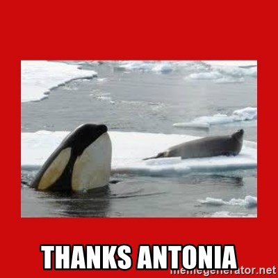 Thanks Obama! -  Thanks antonia