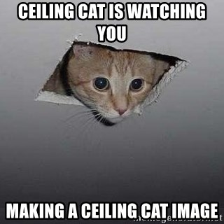 Ceiling cat - Ceiling Cat is watching you making a ceiling cat image
