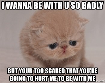 Super Sad Cat - I wanna be with u so badly but your too scared that you're going to hurt me to be with me